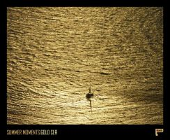 Summer Moments : Gold Sea by Panosware
