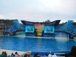 Summer Theme Parks- SeaWorld 44 by 2sisters34