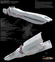 General Dynamics Cole Class Escort Destroyer. by starfleet