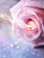 Enchanted Rose by Susaleena