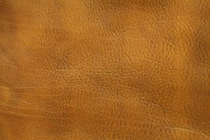 Leather Texture 1 by GENAYNAY