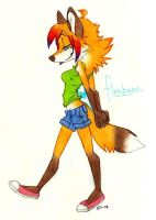 A simple fox for you. by VelvetSkies