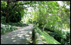 Fort Canning Grounds by mavart