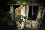 Cottage in the Depths of the Forest by TheManWithTheHat666