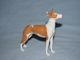 Ibizan Hound 4 by Avocet21