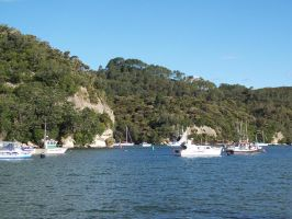 More from Whitianga 7 by OWTC-Stock