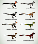 Novaraptor skin ideas by ZeWqt