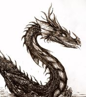 Cheerful dragon by elicenia