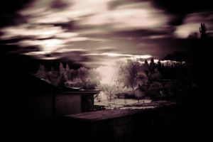 first humble attempt at infrared photography by DanielGliese