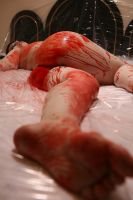 Blood and Babypowder .05 by BloodyBlackCat-Stock