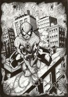 spider-man. by DALBELLO182