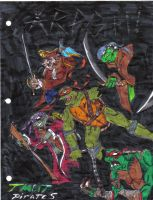 TMNT Pirates-finnished piece by boochan82