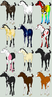 SPaVES Foal Adopts - WINNERS by orengel