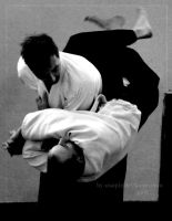 Aikido Sessions 3 by xnaqtix