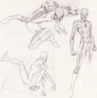 Spiderman sketches by timothygreenII