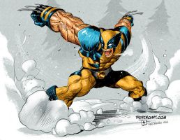 Wolverine Fanart by raultrevino