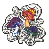 trippy shrooms by wildwillowoods