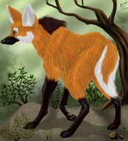maned wolf-realism try by LobaFeroz