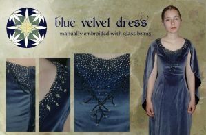 Blue Velvet Dress by Anylon
