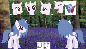 Granted Bluebelle's Official Ref Sheet by Bocchinocullen