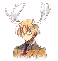 Antlers by ROSEL-D