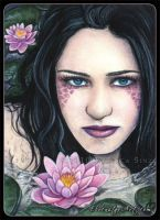 ACEO -- Lotus by ElvenstarArt