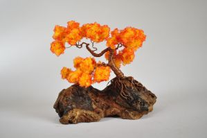 Late autumn bonsai by NoriAnum