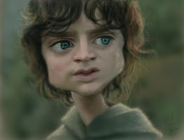 Mr. Frodo by StudioCandia