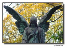 fallen angel or angel in fall? by theMuspilli