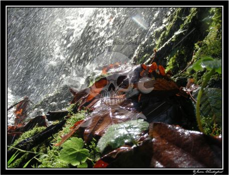 Showers from a waterfall by G-phoney