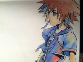 Sora by AFD87