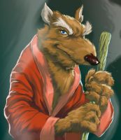 Splinter by jaimecastro