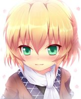 Touhou - Don't Cry Parsee by KANE-NEKO