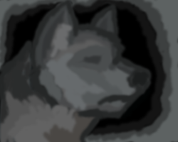 Wolf in Muroland by Rhymeable