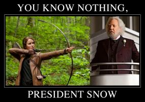 You Know Nothing, President Snow by mirisu92