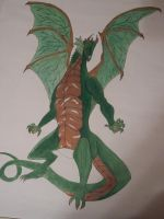 green and copper dragon by moose-lee