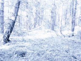 Snowy dreams forest stock I by SilaynneStock
