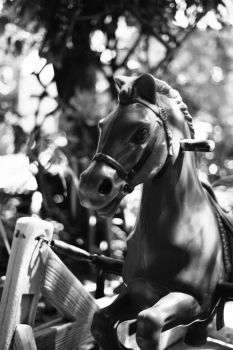 horse by FoxLady2