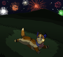 4th Of July - 2011 by Miiroku