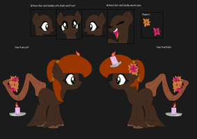Lavender Haze Ref Sheet by MoonIight-Eevee