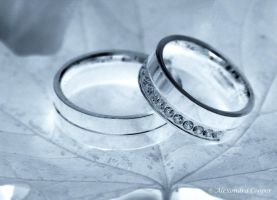 Silver Rings by phoenics1