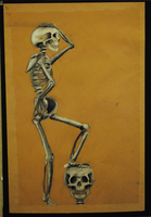 Posing Skeleton by Katfuzzmunchkin