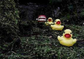 Duck, duck, duck... by PartTimeCowboy