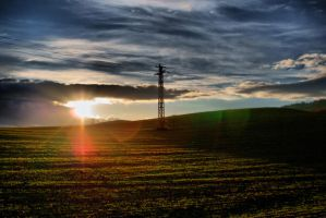 Electric meadow by p0isson