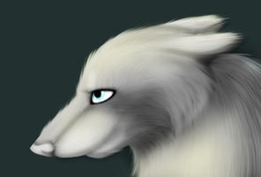 Wolf head (Unfinished) by Mzclueless