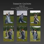 Pack 149 Tarmon Gai'don by Elandria