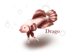 My Fishy!! by Cevaillustrations