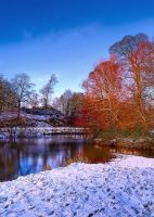 Snow at River Lagan Minnowburn by Gerard1972