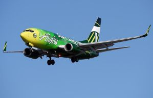 Boeing 737-700 Portland Timbers by shelbs2