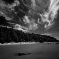 Second Beach, La Push II by aponom